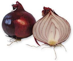 Grøntsager: Rødløg